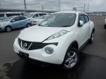 Nissan 2013 JUKE